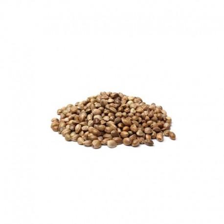 Konopie ziarno niełuskane 0,5 kg